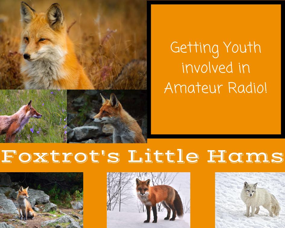 Foxtrot's Little Hams Aesthetic Board
